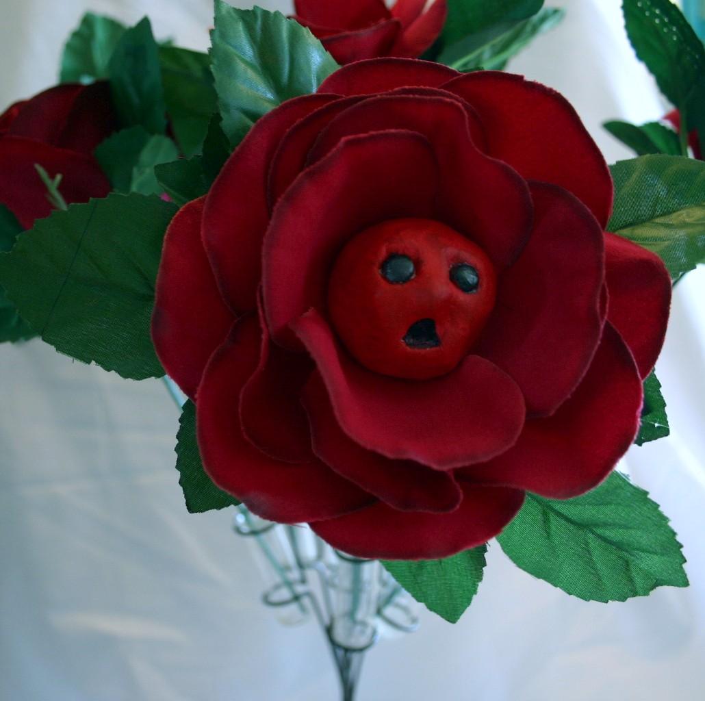 Alice Wonderland Flowers